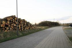 NaturzerstoerunginHoltenau_0136
