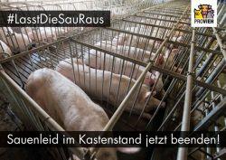 Postkarte-kastenstand_quer_2020_Motive01