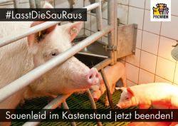 Postkarte-kastenstand_quer_2020_Motive03